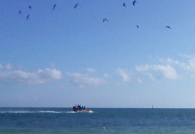 airboat off inch beach