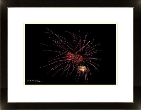 Alien Eyes - Independence Day Fireworks in a Solo Show at NMC through July and August