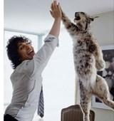 Naked Drunk Guy Steals Bobcat