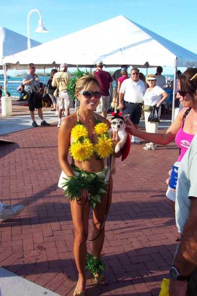 Fantasy Fest Sunflower
