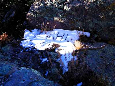 Snow at Chiricahua