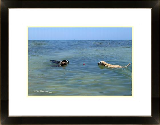 Mine -- three happy dogs and one ball -- in a Solo Show at NMC through July and August